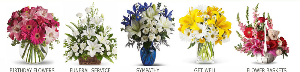 florists in elgin il